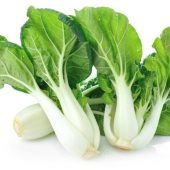 Can Rabbits Eat Bok Choy?