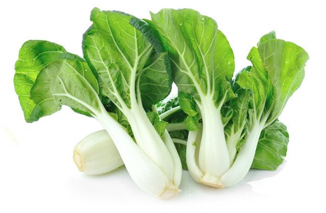 can rabbits eat bok choy