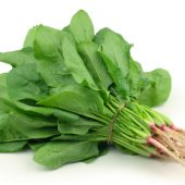 Can Rabbits Eat Spinach?