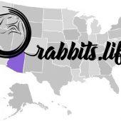Adopt a rabbit in Arizona