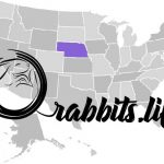 Adopt or buy a rabbit in Nebraska