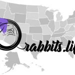 Adopt or buy a rabbit in Nevada