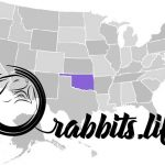 Adopt or buy a rabbit in Oklahoma