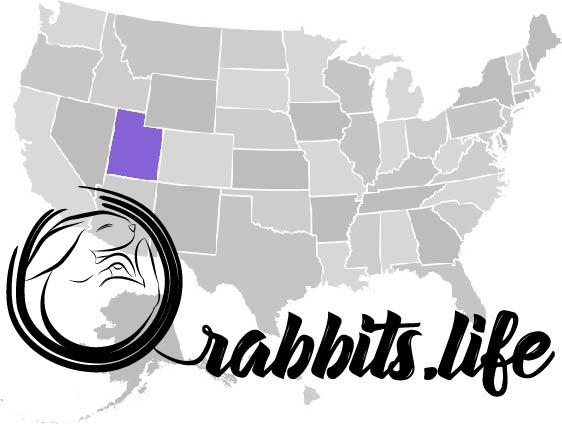 Adopt or buy a rabbit in Utah